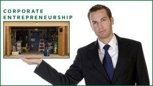 corporate entrepreneurship 2