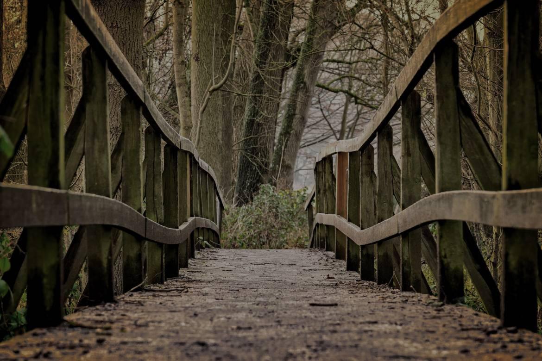 bridge-3024773_1920-1.jpg