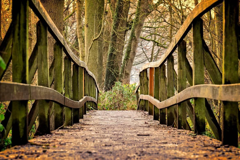 bridge-3024773_1920.jpg